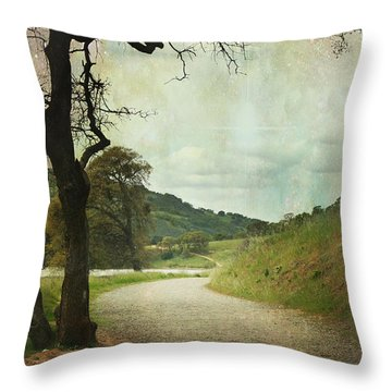 Walk Of Life Throw Pillow by Laurie Search