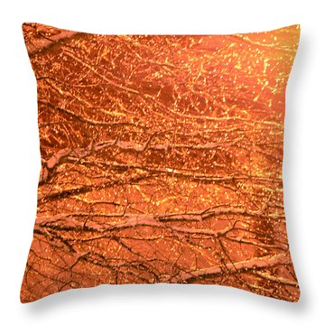 Warm Icy Reflections Throw Pillow by Sandi OReilly