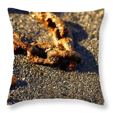 Washed Ashore Throw Pillow by Cheryl Young