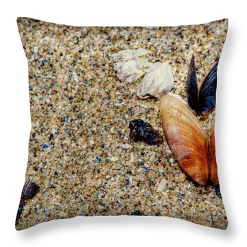 Washed Up Throw Pillow by Lisa Knechtel