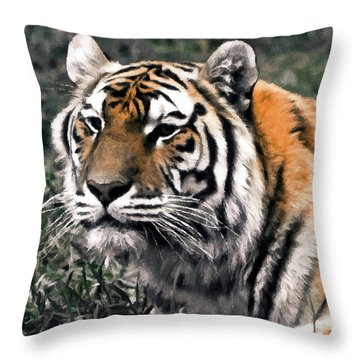 Watchful Bengal Tiger - Brush Stroke Throw Pillow by Darcy Michaelchuk