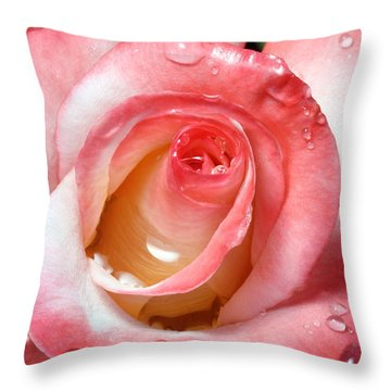 Water Droplets On Rose Throw Pillow by David Yunker