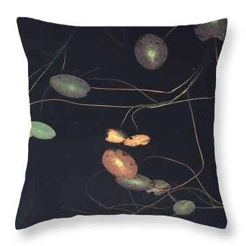 Water Lily Pads Trail Along The Surface Throw Pillow by Farrell Grehan