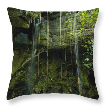 Waterfalls  Throw Pillow by Jacques Jangoux and Photo Researchers