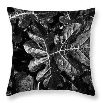 Watermelon Leaves Throw Pillow by Tom Bell
