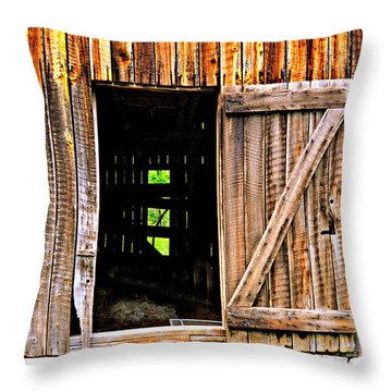 Weathered Barn Door Throw Pillow by Marty Koch