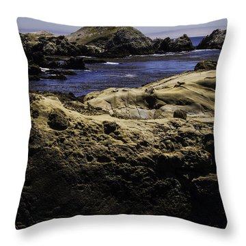 Weathering The Sea Throw Pillow by Jo-Anne Gazo-McKim