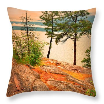 Welcoming The Morning Throw Pillow by Tara Turner