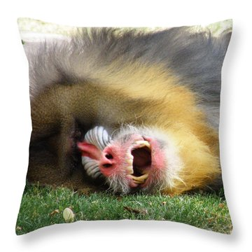 What Big Teeth You Have Throw Pillow by Feva  Fotos