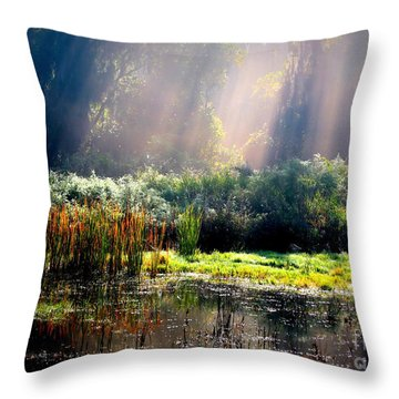 When Morning Hits The Marsh Throw Pillow by Carol Groenen