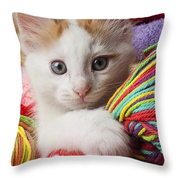 White Kitten Close Up Throw Pillow by Garry Gay
