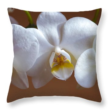 White Orchid  Throw Pillow by Svetlana Sewell