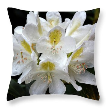 White Simplicity Throw Pillow by Pravine Chester