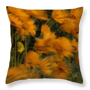 Who Has Seen The Wind Throw Pillow by Bob Christopher