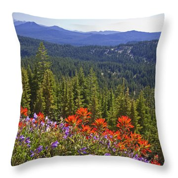 Wildflowers And Mountaintop View Throw Pillow by Ellen Thane and Photo Researchers
