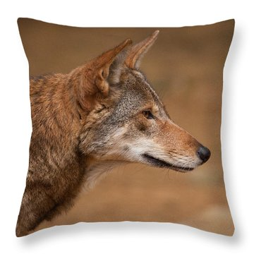 Wile E Coyote Throw Pillow by Karol Livote