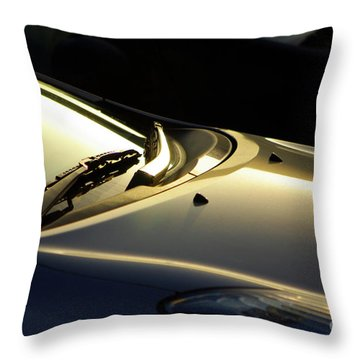 Windshield Wiper Throw Pillow by Carlos Caetano