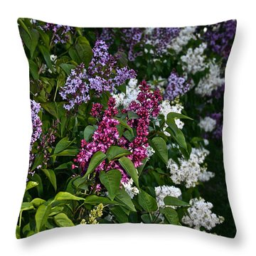Winning Color Throw Pillow by Susan Herber
