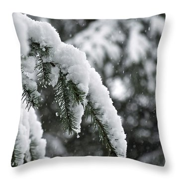 Winter Charm Throw Pillow by Gwyn Newcombe