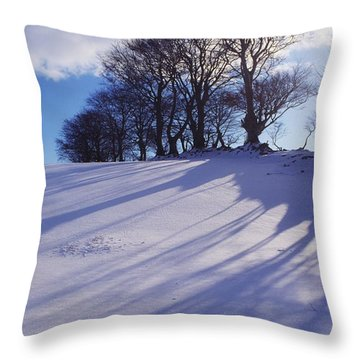 Winter Landscape Throw Pillow by The Irish Image Collection