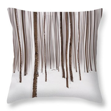 Winter Throw Pillow by Mircea Costina Photography