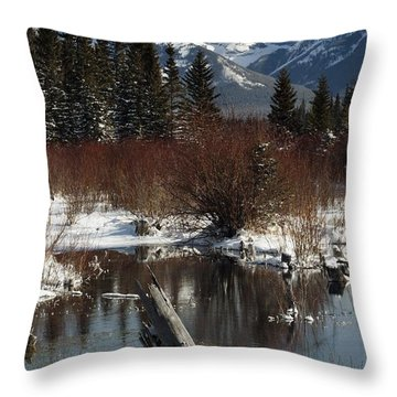 Winter Over Vermilion Lake, Banff Throw Pillow by Michael Interisano