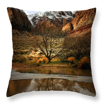 Winter Reflections Throw Pillow by Nabila Khanam