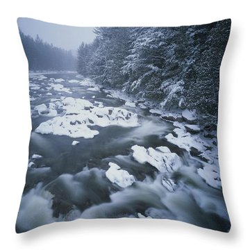Winter View Of The Ausable River Throw Pillow by Michael Melford