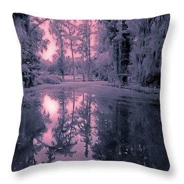 Winterland In The Swamp Throw Pillow by DigiArt Diaries by Vicky B Fuller