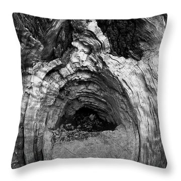 Wood You Smile  Throw Pillow by Trish Hale