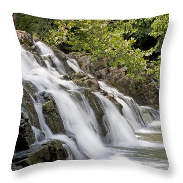 Woosh  Throw Pillow by Betsy Knapp