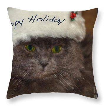 Yankee Cat Throw Pillow by Joann Vitali