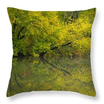 Yellow Autumn Throw Pillow by Karol Livote