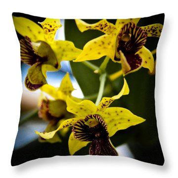 Yellow Orchids Throw Pillow by David Patterson