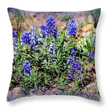 Yellowstone Lupine Blue Throw Pillow by Carol Groenen