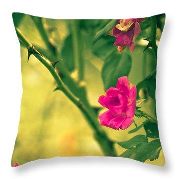 Yesterday In The Garden Throw Pillow by Kim Henderson