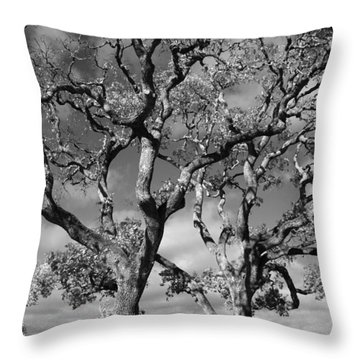 You Never Let Me Down Throw Pillow by Laurie Search
