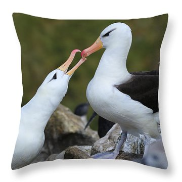 You're The One Throw Pillow by Tony Beck