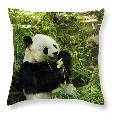 Yum Throw Pillow by John  Greaves