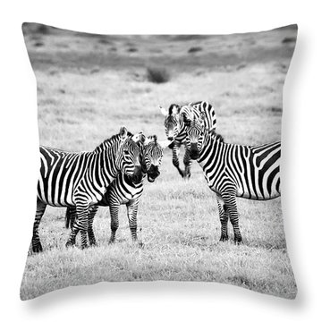 Zebras In Black And White Throw Pillow by Sebastian Musial