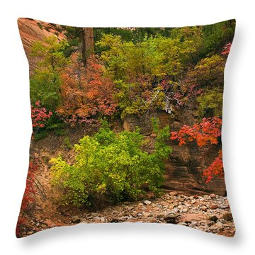 Zion Fall Colors Throw Pillow by Dave Dilli