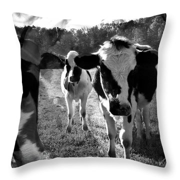 Zoey And Matilda In The Blissful Sun Throw Pillow by Danielle Summa