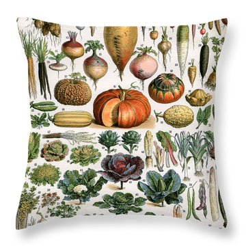 Illustration Of Vegetable Varieties Throw Pillow by Alillot