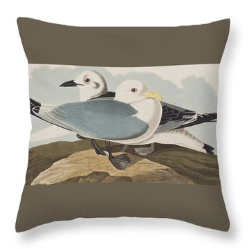 Kittiwake Gull Throw Pillow by John James Audubon
