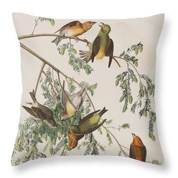 American Crossbill Throw Pillow by John James Audubon