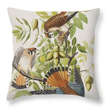 American Sparrow Hawk Throw Pillow by John James Audubon