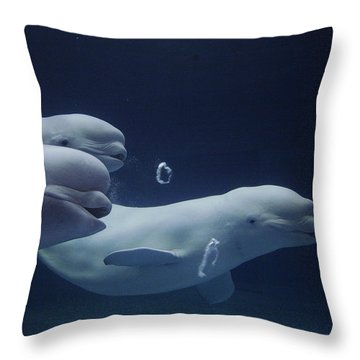 Beluga Delphinapterus Leucas Whale Trio Throw Pillow by Hiroya Minakuchi