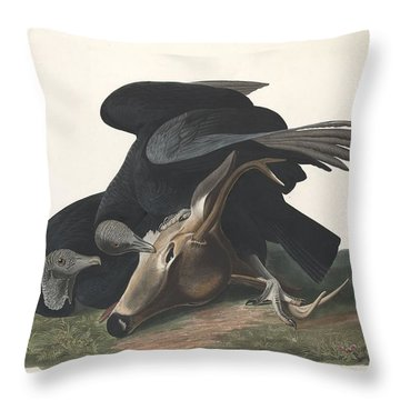 Black Vulture Throw Pillow by John James Audubon