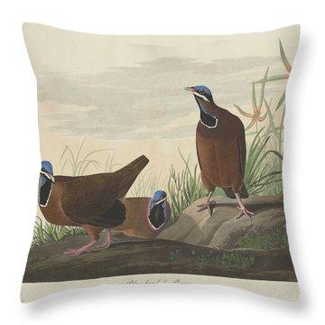 Blue-headed Pigeon Throw Pillow by John James Audubon