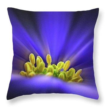 blue Shades - An Anemone Blanda Throw Pillow by John Edwards